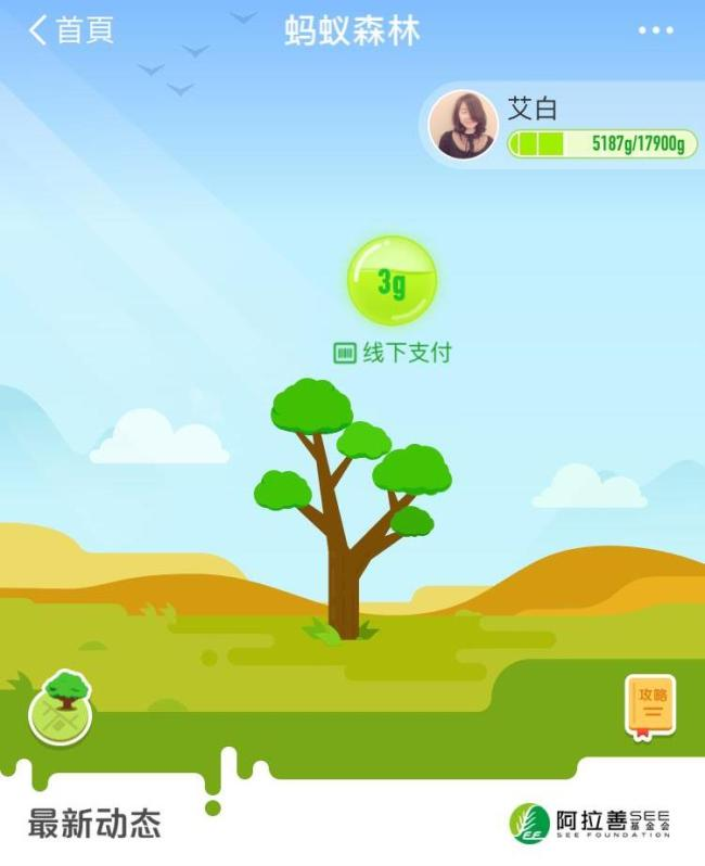 """The virtual tree planted by a user of Apliay in his/her """"Ant Forest"""" account. [Photo: courtesy of Ant Financial Services Group]"""