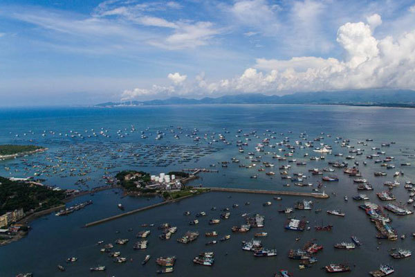 Fishing boats head to the sea at the Hailing Island in Yangjiang City, south China's Guangdong Province, on August 16, 2017. [File photo: Xinhua]