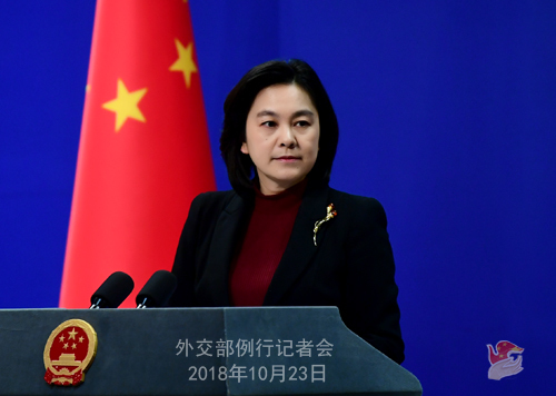 Chinese Foreign Ministry spokesman Hua Chunying [File Photo:Chinese Foreign Ministry]