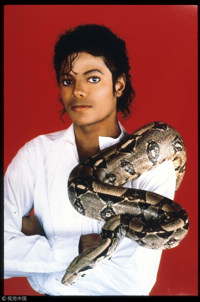 Entertainer Michael Jackson poses with his pet boa constrictor on September 15, 1987 in the USA. [File photo: VCG]