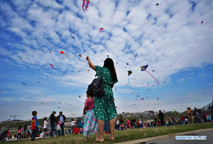 People Fly Kites During Cherry Blossom Kite Festival In