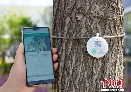 Imported plants at the Beijing International Horticultural Exhibition have been tagged with ID cards, seen here on May 29, 2019. Visitors can scan the unique QR on each tag using their phone to see a plant's history and quarantine information. [Photo: Chinanews.com]<br/><br/>