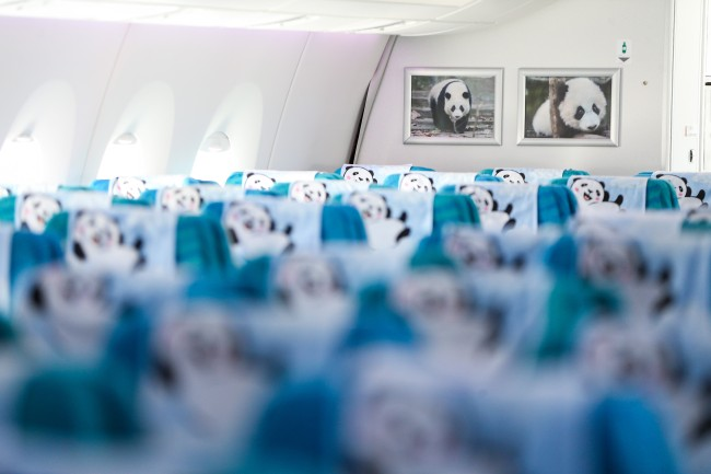 Inside(内部) the panda-themed Sichuan Airlines Airbus A350 at Istanbul Airport in Turkey on Thursday, August 1, 2019. [File Photo: Anadolu Agency via IC/Muhammed Enes Yildirim]