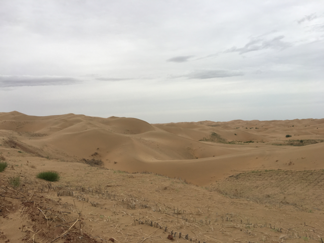 "Sand dunes are everywhere in ""no man's land"" of Kubuqi.[Photo: from China Plus]"