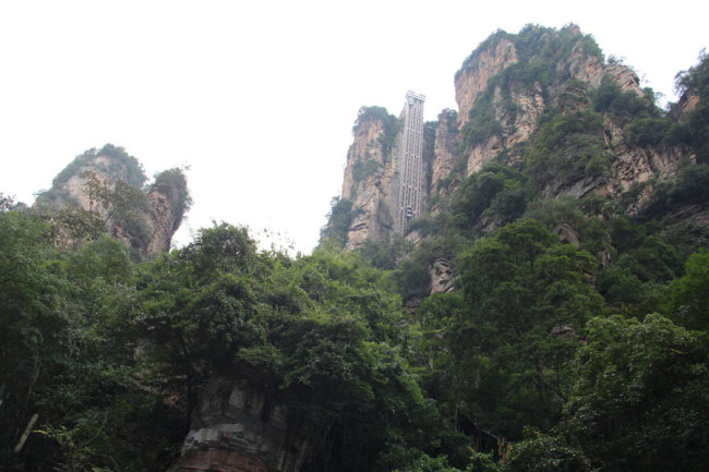 The Bailong elevator and greeneries around Mount Tianzi in Wulingyuan Scenic Area is 326 meters high and also the world's highest outdoor elevator. [Photo courtesy of Melsam Ojha]